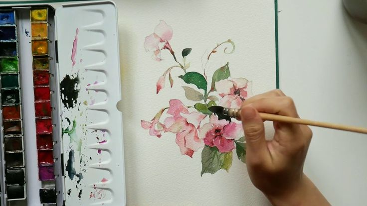 Speed Painting pink flower in watercolor