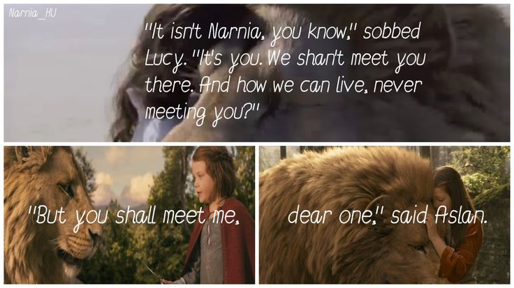 """It isn't Narnia, You know. It's You. (edited by Narnia_HU)"