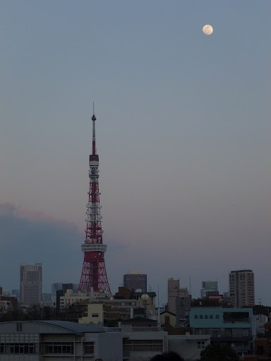 A beautiful scene from Oracle OpenWorld Tokyo 2012, Roppongi.