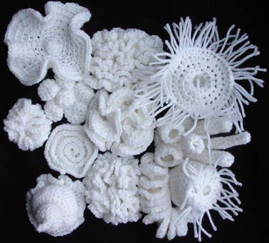 Crochet Coral Reef : Bleached crochet coral reef. Crochet III: Pin 2007... Pinterest