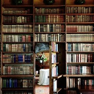 Hidden half door for kids connecting  library and great room.  How fun!