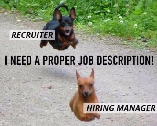 Meme Human Resources: 98 Best Recruitment Memes That We Love Images On Pinterest