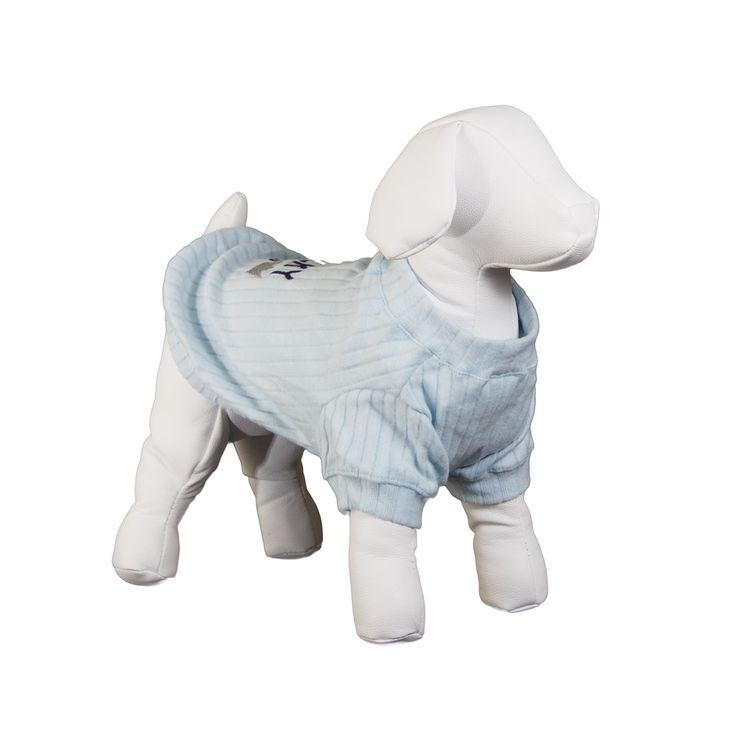 Camiseta Luck Dear Dog Azul. #camiseta #roupa #roupinha #roupaparacachorro #roupinhaparacachorro #cao #filhote #petmeupet #cachorro #desconto #promocao