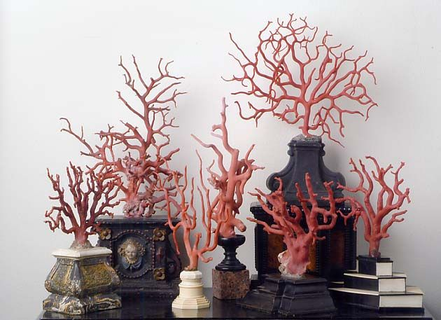Collection of coral trees Italy, 17th century at Kunstkammer Georg Laue