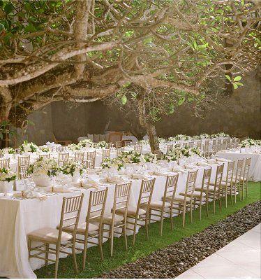 // Under a tree wedding breakfast
