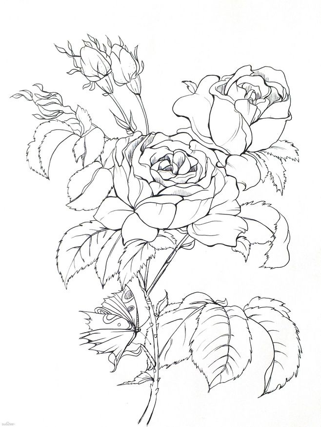 Printable Coloring Pages Snapdragon