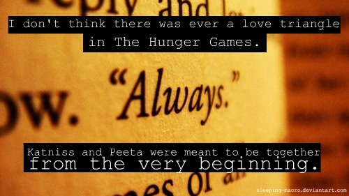 #Hunger GamesThe Hunger Games, Games Obsession, Hunger Games Peeta And Katniss, Games Boards, Hunger Gamespeeta, So True, Hungergames, Good Books, True Stories