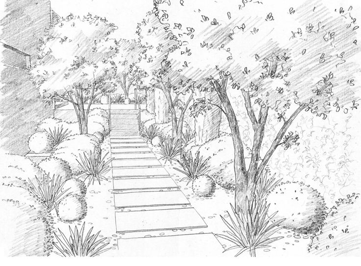 Landscape drawings renate 39 s drawings pinterest for Draw your own landscape plan