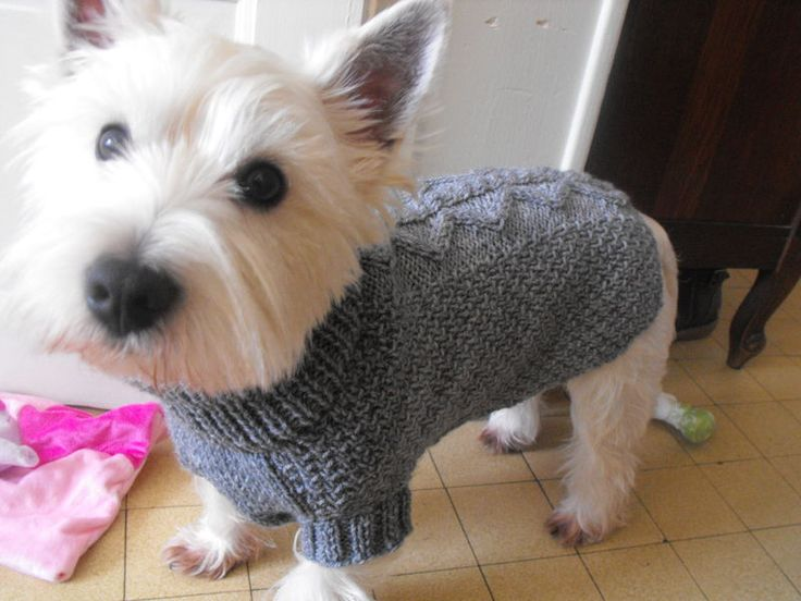 photo tricot modele tricot gilet yorkshire 2