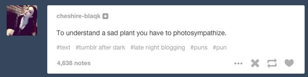 The 25 Weirdest Things That Have Happened On Late Night Tumblr I'm so done with this shit