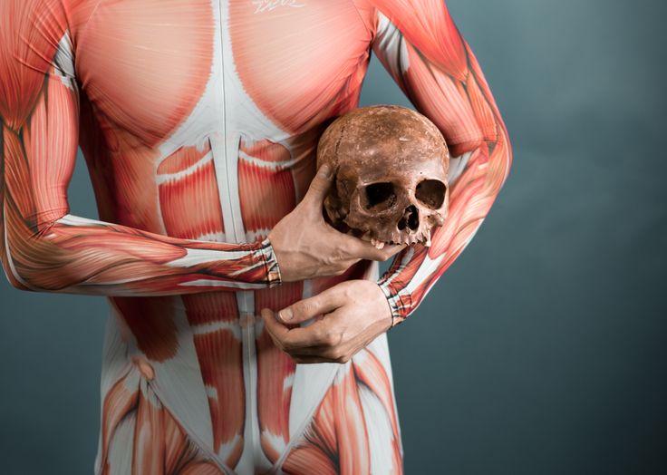 anatomy - muscle skin suit and skull bone