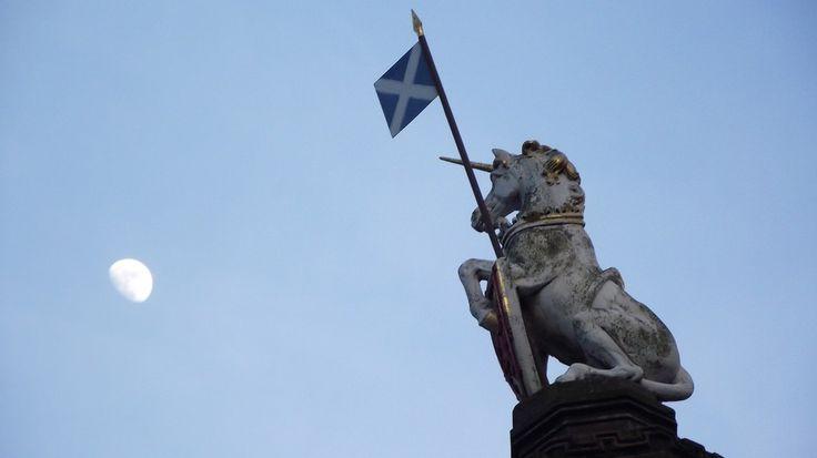 Scotland's National Animal - The Unicorn