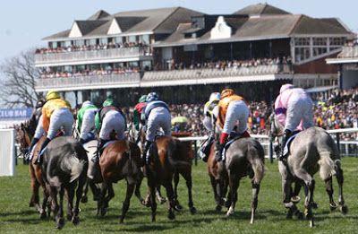 Racecourse Website Directory : Ayr Racecourse Website, Twitter Link & Facebook Pa...