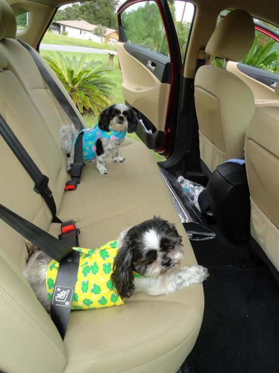 DOG harness vest/safety seat belt to keep by MilliesPetCreations