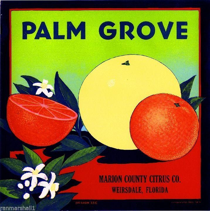 Weirsdale Florida Palm Grove Orange Citrus Fruit Crate Label Art Print