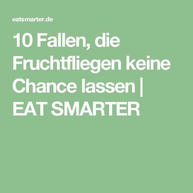 10 Fallen, die Fruchtfliegen keine Chance lassen | EAT SMARTER