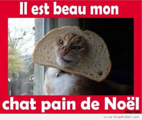 112 best dr le images on pinterest - Sapin de noel humour ...