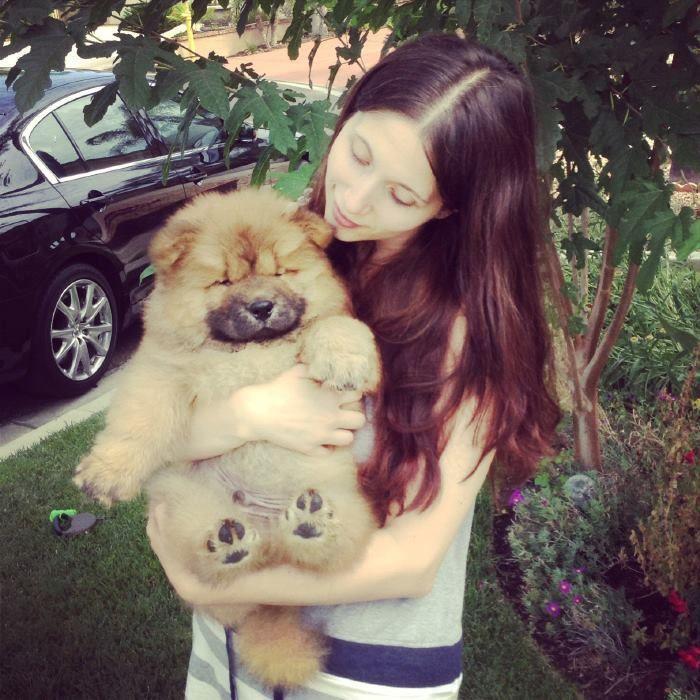my chow chow puppyhttp://www.youtube.com/watch?v=Sgjb6-c0pW0
