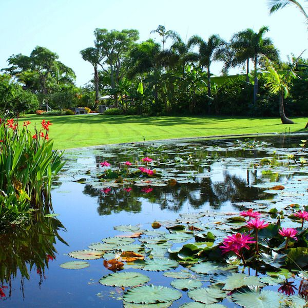 Vacations In Naples Fl: 218 Best SW Florida Budget Family Travel Images On