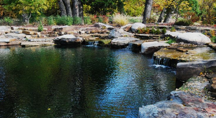 17 Best Images About Natural Swimming Pools On Pinterest Decks Backyards And Pools