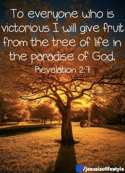 Revelation 2:7   To everyone who is victorious I will give fruit from the tree of life in the paradise of God.
