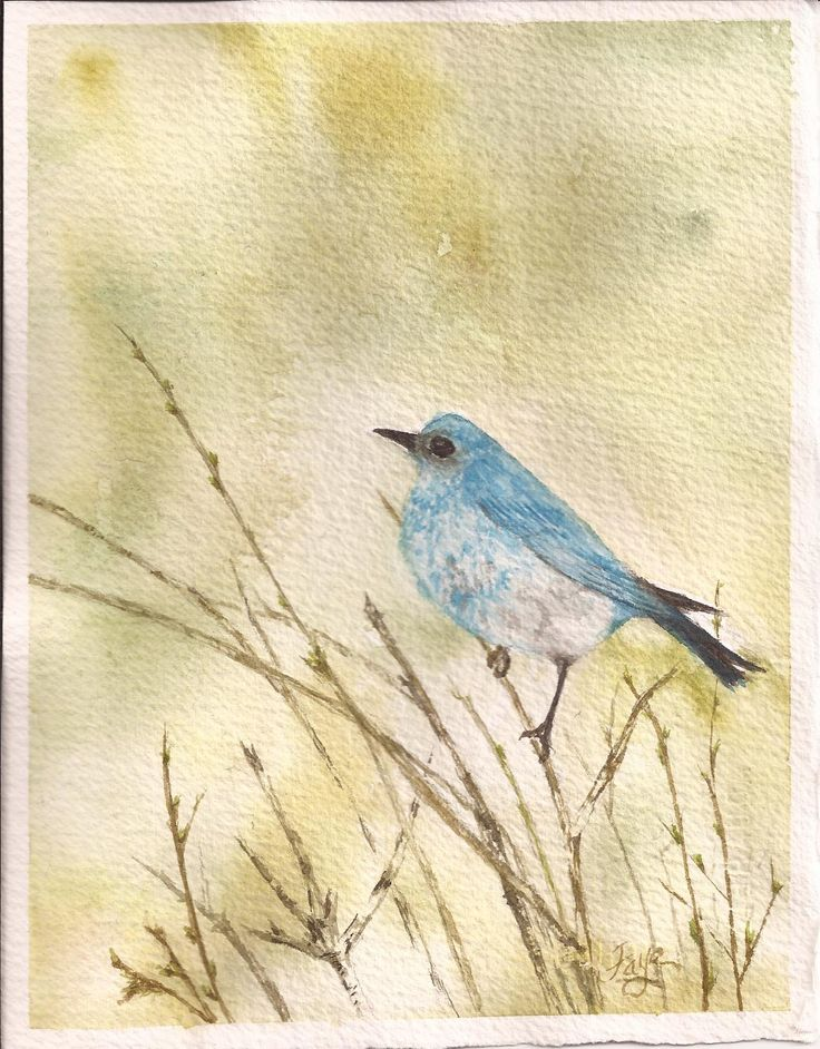 spring is in the air ... original watercolour by Faye Blondin