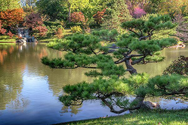 copyright greg kluempers Japanese garden, Garden photos