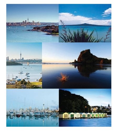 Get Mum these gorgeous Auckland magnets to brighten up her fridge  -  only $19.90 for the set from Texan Art Schools