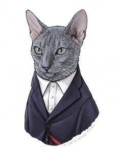 Confira nossa galeria com os 12 Doutores em forma de gatos!