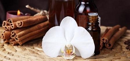 Orchidea fahéjjal fűszerezve