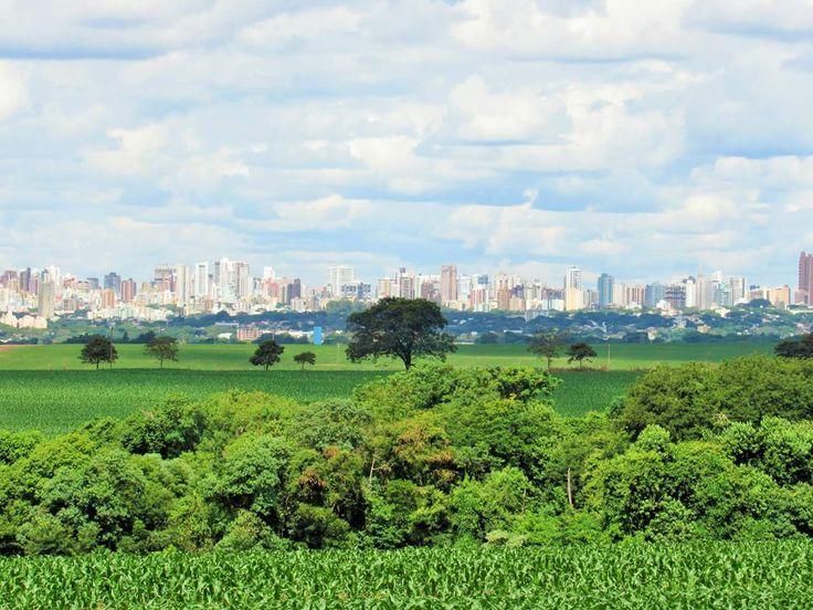 Área rural de Maringá-PR - Brasil