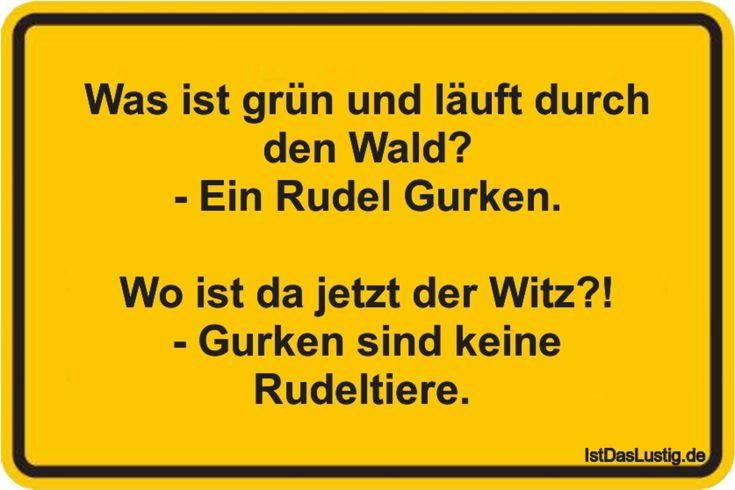 Was ist grün und läuft durch den Wald? - Ein Rudel Gurken.  Wo ist da jetzt der Witz?! - Gurken sind keine Rudeltiere.  ... gefunden auf https://www.istdaslustig.de/spruch/4367 #lustig #sprüche #fun #spass