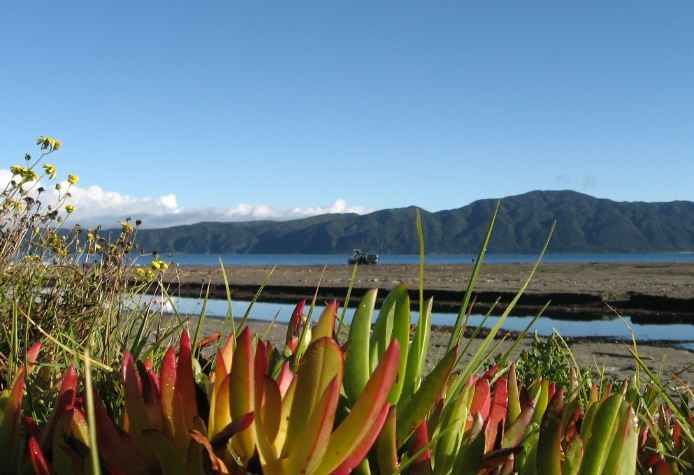 Kapiti Island viewed from Paraparaumu Beach (SW coast of NZ's North Island)