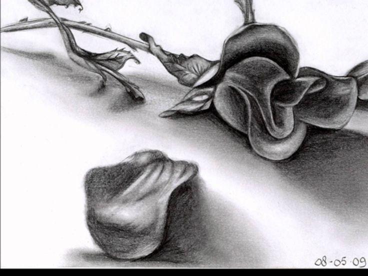Κώστας Σαφέτης ~ Τριαντάφυλλα Σπασμένα