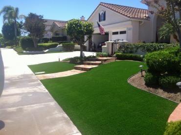 Artificial Grass Photos: Fake Grass Carpet Eastgate, Washington Landscape Design, Landscaping Ideas For Front Yard