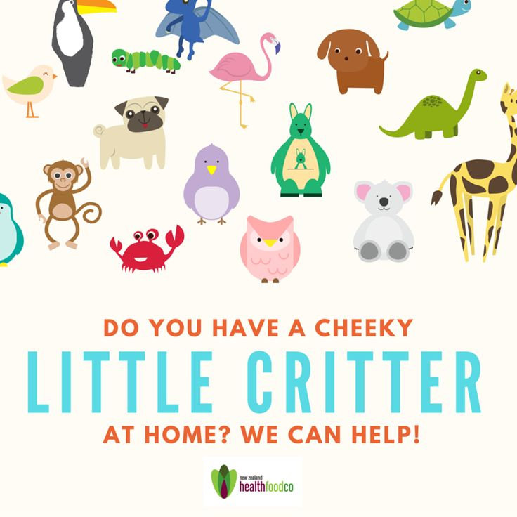 Do you have a cheeky little critter at home? Day 2 of School Holidays and already exhausted? We hear you! Here at NZHF, we're parents too, so are always looking for new and exciting products that are healthy AND appealing to you rkids. Shop in store or online today at http://www.nzhealthfood.com/childrens-health.html #children #kids #parents #energy #stress #quote #life #help #health #natural