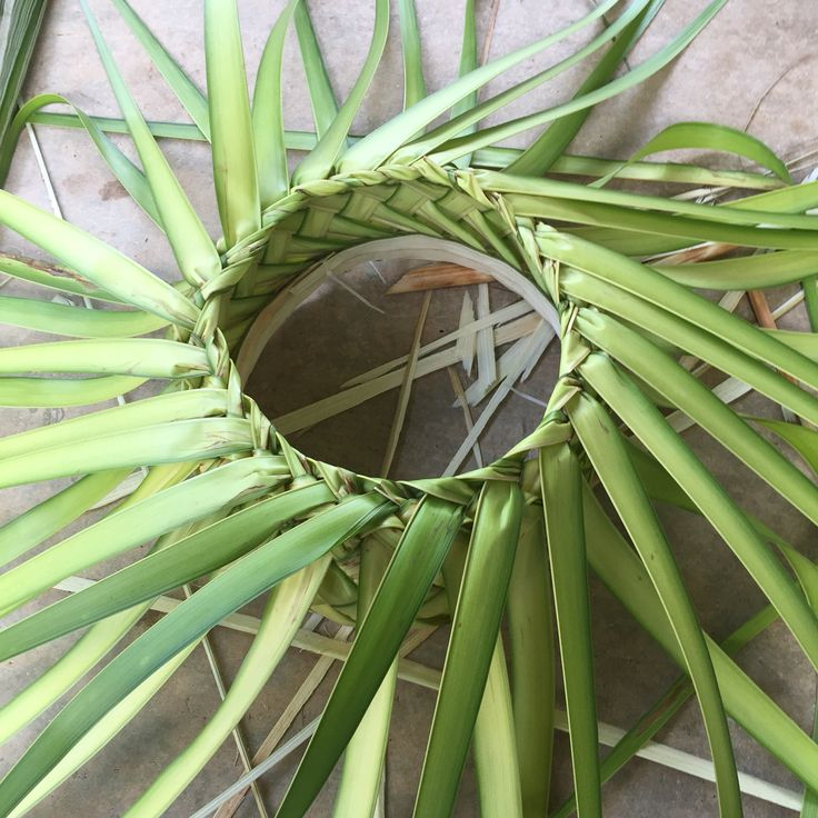 How To Weave Palm Fronds Into A Basket : Best palm leaves images on palms floral