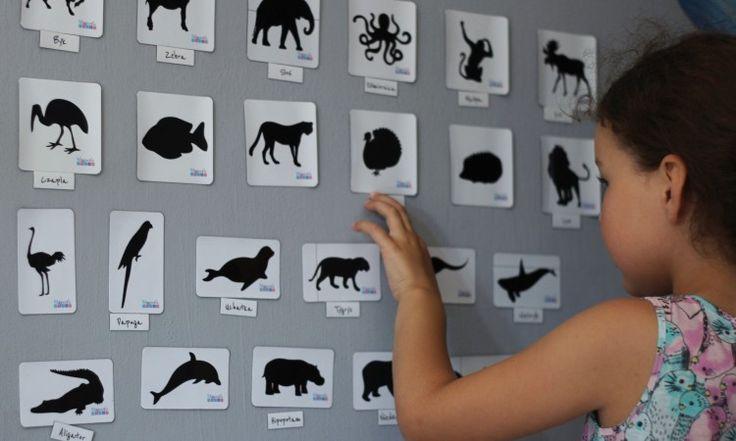 Magnetycznie zwierzątka na ścianę (pomalowaną farbą pod magnesy) lub lodówkę z nazwami po polsku i angielsku <3