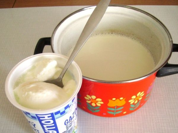 Domácí bílý jogurt