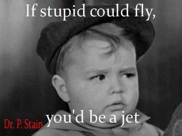 If stupid could fly                                                                                                                                                      More