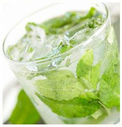 Minty Refresher  http://www.hulettssugar.co.za/step_into_our_kitchen_minty_refresher_thirst_quenchers_recipes