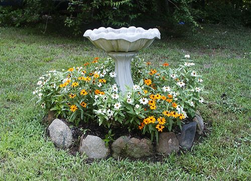 zinnias around bird bath - Google Search