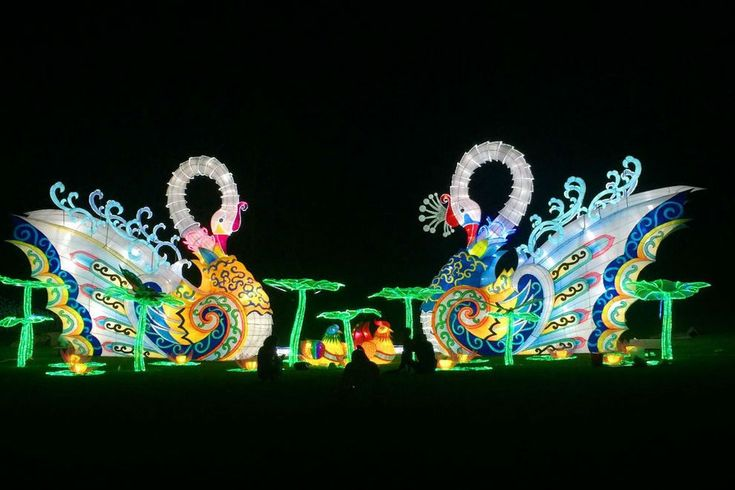 Holiday Wonder at Fair Park: Dallas Attractions Review - 10Best Experts and Tourist Reviews