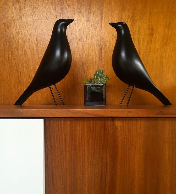 Lovebirds   #eameshousebird #eames #charlesandrayeames #credenza #babycactus #midcenturymoderndecor…