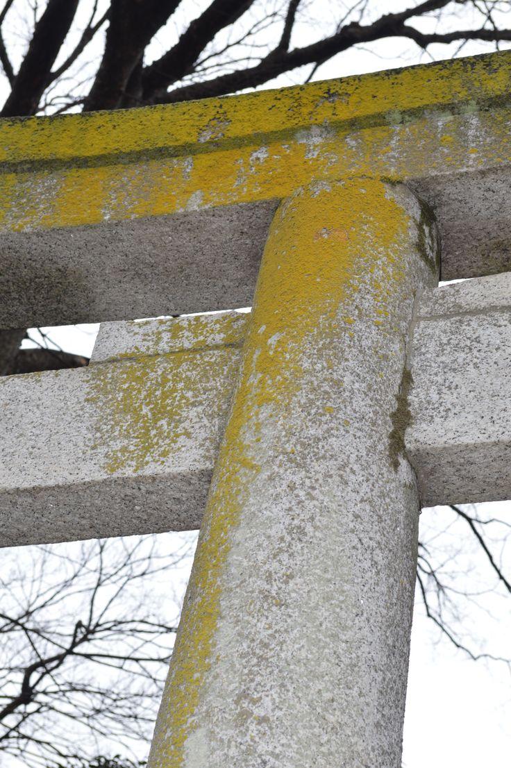 Moss on temple gateway.  -Hand stitch, beading