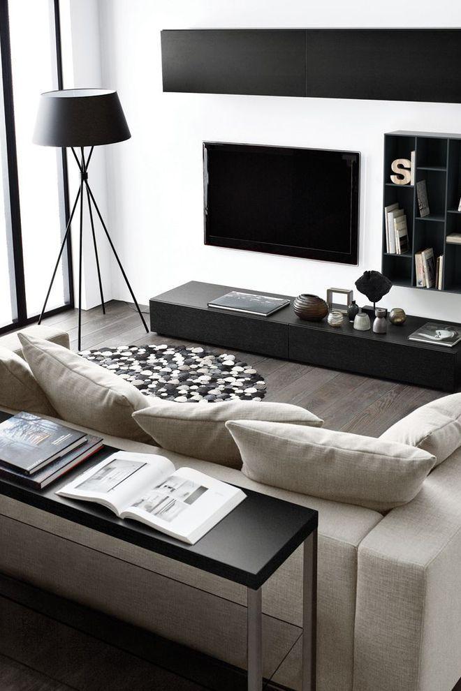 La télévision comme un tableau