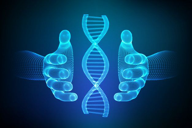 Dna Sequence In Hands Wireframe Dna Mol Premium Vector Freepik Vector Technology Hand Medical Hands Dna Sequence Dna Molecule Dna Art