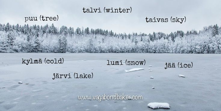 Why I'm Learning Finnish! - Vagabond Baker