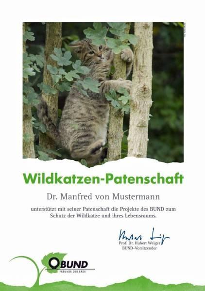 Die Wildkatzenpatenschaft des BUND. Ein tolles Geschenk für Katzenfreunde. #cats #katzen #geschenke #weihnachten #gifts