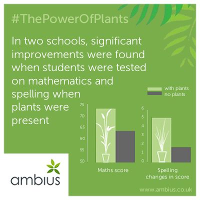 Improved results for students tested on mathematics and spelling when plants were present